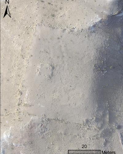 descubrimiento plataforma Petra