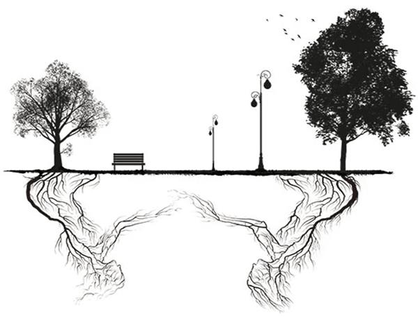 árboles comunicándose